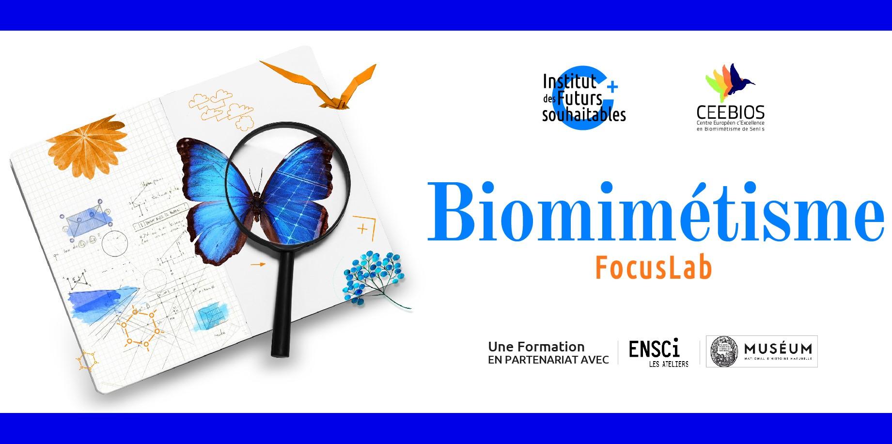 Biomimétisme Territorial – Institut des Futurs Souhaitables et TYL